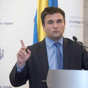 Климкин взвалил вину за ситуацию в Закарпатье на Украину