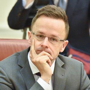 Сийярто: Заступимся за всех членов меньшинства на Закарпатье