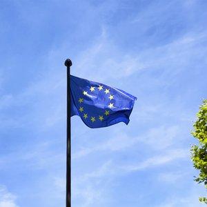 Чехия хочет упростить получение гражданства для закарпатцев