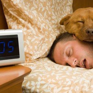 При хроническом недосыпе мозг начинает есть сам себя: ученые