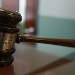 Апелляционная палата вынесла 100 решений в защиту авторских прав