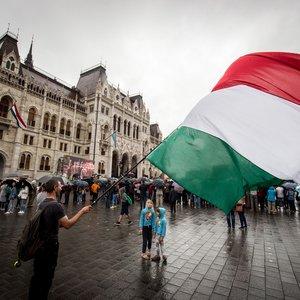 МИД Венгрии о языковом законе: Надеемся на Зеленского