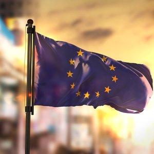 Курс на ЕС и НАТО. Вступили в силу изменения в Конституцию