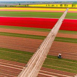 Антирейдерская комиссия вернула украинцам 6 тыс. гектаров земли