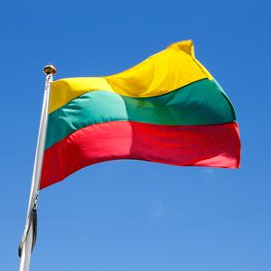Грузия утвердила новое название Литвы