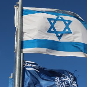 Израиль и США в ООН выступили против расследования по Газе