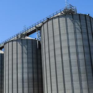 Украинская компания вложит $70 млн в агропроект в Беларуси