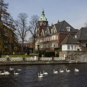 Власти Гамбурга запретят въезд дизельных авто