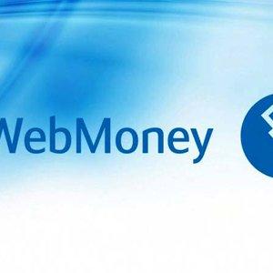 Гривневые кошельки WebMoney заморожены до 2021 года - компания