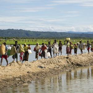 Число беженцев в мире равно населению Таиланда - ООН