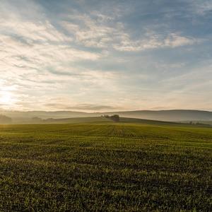 Верховная Рада приняла закон о едином массиве сельхозземель