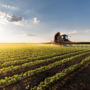 Финансовые расследования (форензик) в агробизнесе
