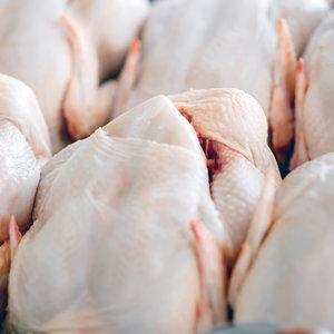 У Житомирі ув'язнених годували курятиною з сальмонелою - ГПУ