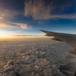 Украинцы стали больше летать и меньше ездить