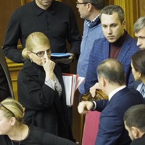 У партий Тимошенко и Ляшко заберут 250 тыс. грн взносов - НАПК