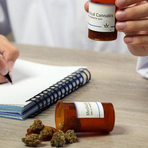 В Раде зарегистрировали законопроект о медицинском каннабисе