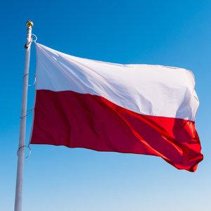90% разрешений на трудоустройство в Польше получили украинцы