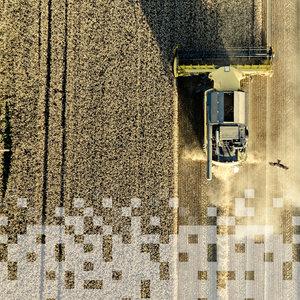 IT-прокачка. Как защитить агробизнес от рейдеров и воров