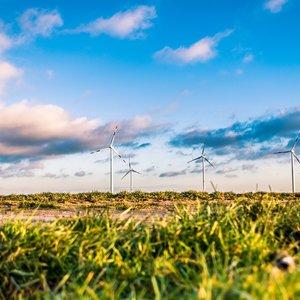 Синоптики предупреждают о сильном ветре: погода, карта