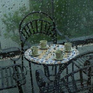 Суд обязал мукачевское кафе заплатить 240 000 грн за музыку