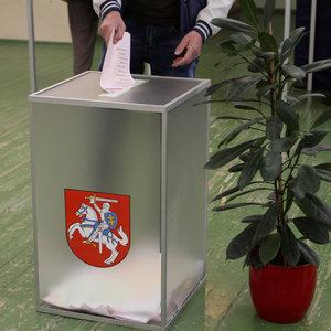 Выборы президента в Литве: кто выходит во второй тур