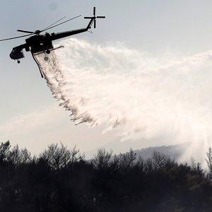 Мощные пожары на Канарских островах тушат авиацией: фото